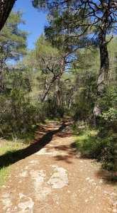 Af Kule Trail