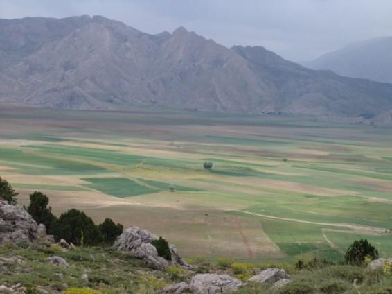 Ak Dağ Yaylası